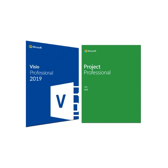 MICROSOFT OFFICE VISIO & PROJECT 2019 PROFESSIONAL